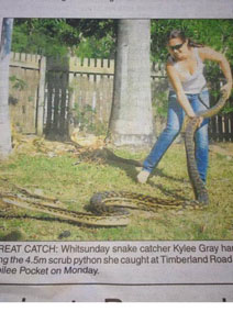 Snake Catcher Kylee with a Scrub Python - Whitsundays